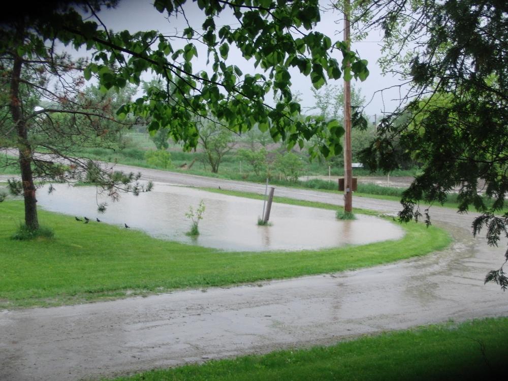 rain2 (1000x750)