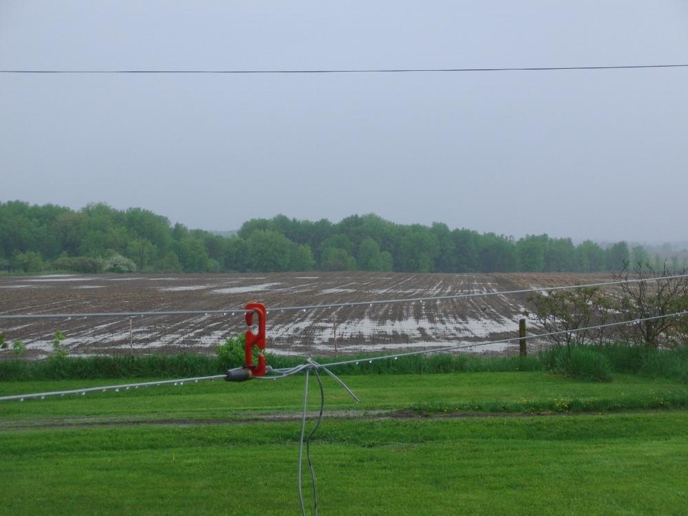 rain3 (1000x750)