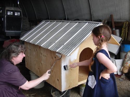 dog house (1000x750)