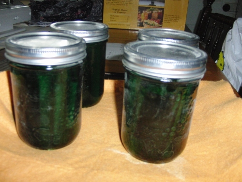 pickles 2 (1000x750)